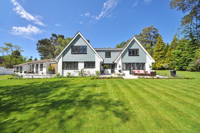 house lawn landscape